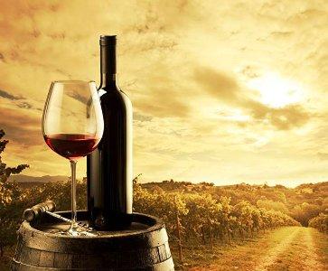 Armenian Wine Tasting