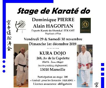Stage de Karaté
